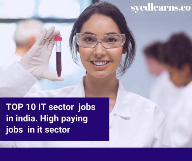 IT sector jobs, it sector jobs in govt, governament it sector jobs