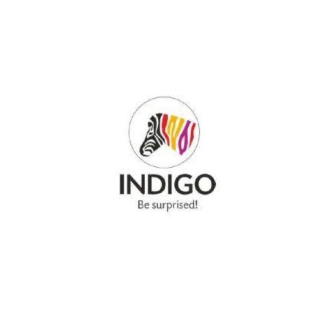 Indigo paints ipo grey market
